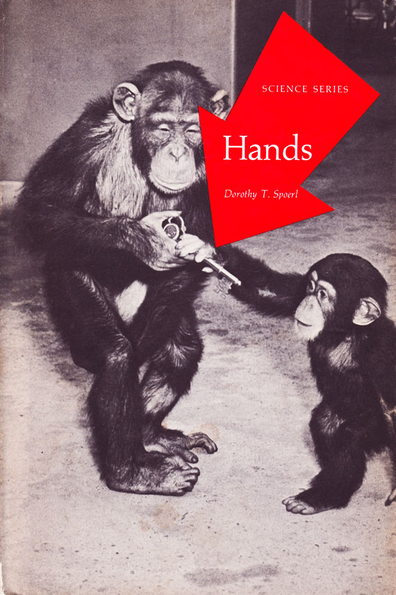 Front Cover of Hands