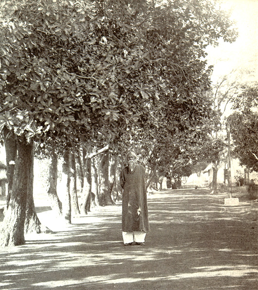 Rabindranath Tagore on a shady lane