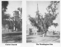 Christ Church & the Washington Elm