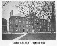 Hollis Hall and Rebellion Tree