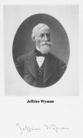 Jeffries Wyman