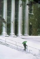 Snowy Day at Widener Library